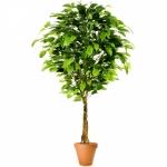 Растение искусственное ФИКУС бенджамина топиарий двойной