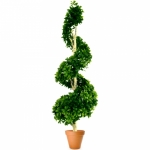 Растение искусственное Тропическое ПИТТОСПОРУМ дерево-спираль